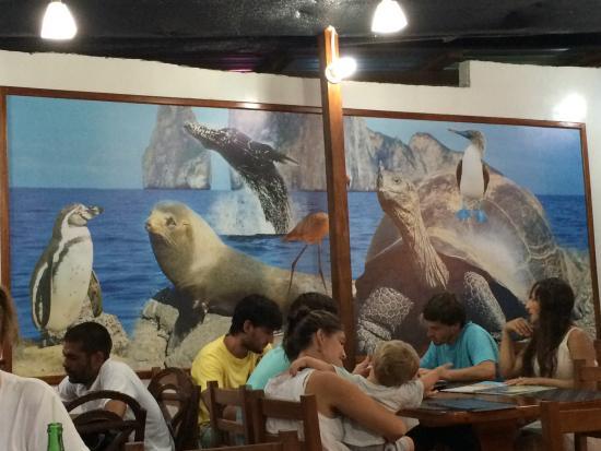 Casa Los Delfines : Inside Los Delfines