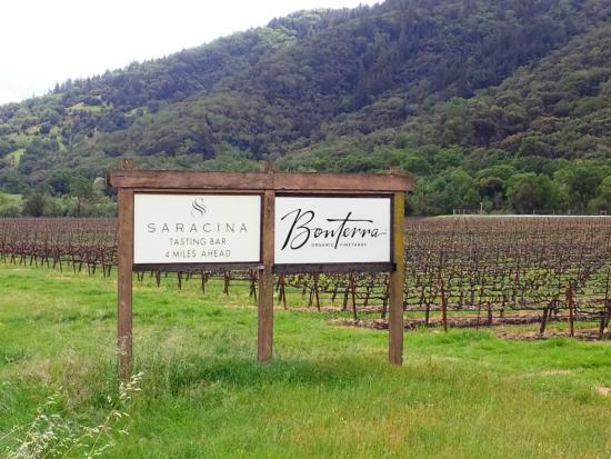 ‪Bonterra Vineyards‬