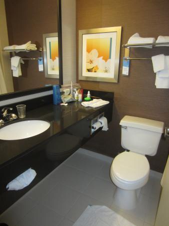 Fairfield Inn & Suites Kansas City Lee's Summit : clean bathroom
