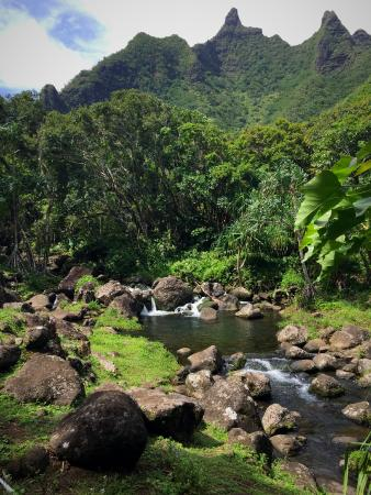 Kauai 39 S Natural Beauty Travel Guide On Tripadvisor