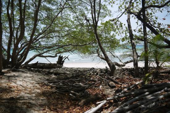 Nicoya, Costa Rica: A l'orée du graal :p