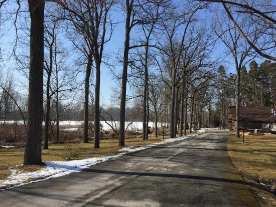 Forest Motel & Woodland Retreat: Beautiful scenery