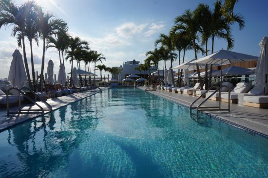 Rooftop Pool The 1 Hotel Picture Of 1 Hotel South Beach Miami