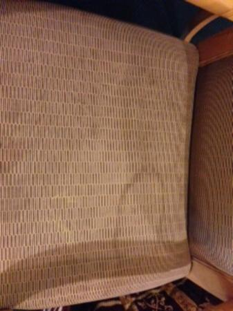 Alamo Inn Motel: Stained chair - yuck!