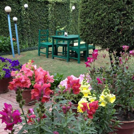 Acme Guest House: Acme Garden - Lovely feeling