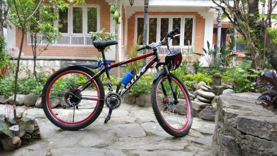 Panday's Paradise : Mountain Bike