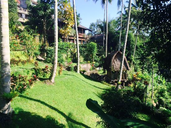 The Kampung Resort Ubud: Garden