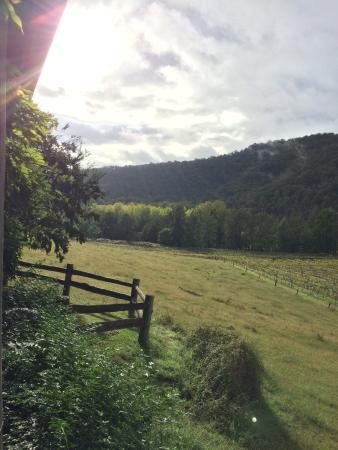 Cedar Creek Cottages & Wine: From Shadforths Cottage Verandah, so beautiful.