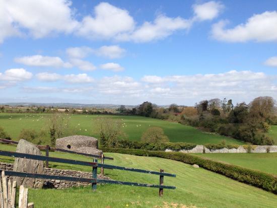 Bru na Boinne: Around the monument - typical Irish countryside