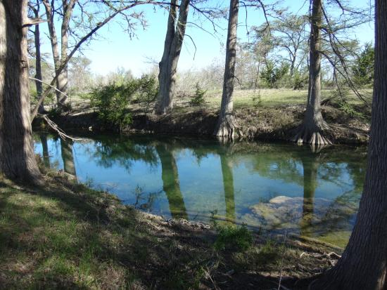 Twin Elm Guest Ranch : Pure Nature