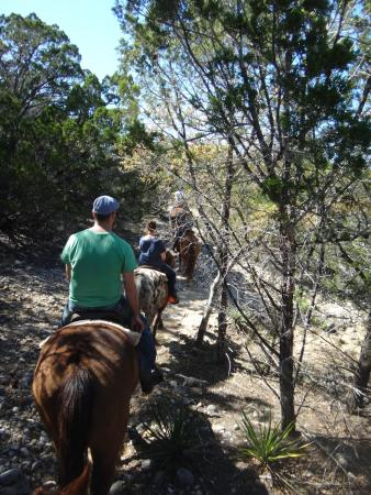 Twin Elm Guest Ranch : Hill Country Trail Ride