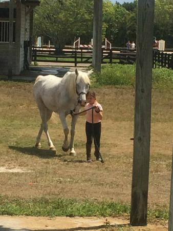 Kalynn and blue picture of golden gait riding stables delray beach