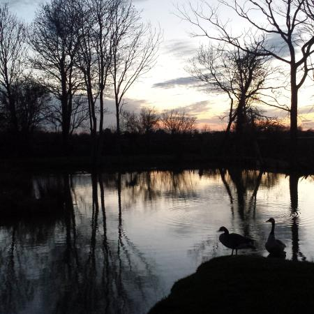 Yaxham Waters Holiday Park: beautiful views