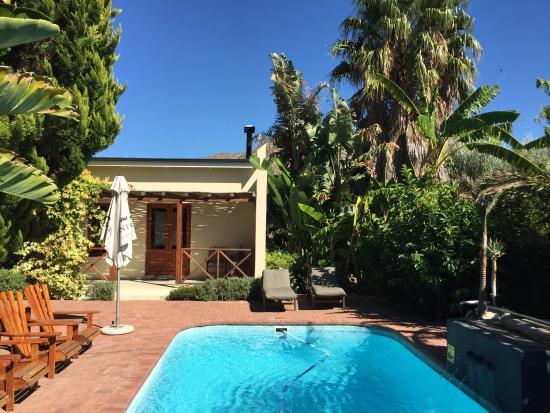 Malherbe Guesthouse: Pool/garden