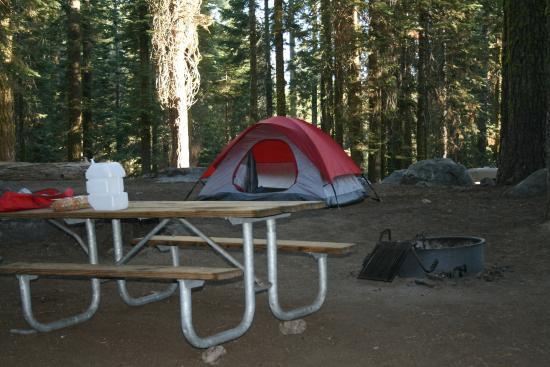 Crane Flat Campground : Zeltplatz Crane Flat