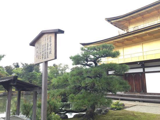 Photo of Tourist Attraction Kinkakuji Temple at 北区金閣寺町1, Kyoto 603-8361, Japan