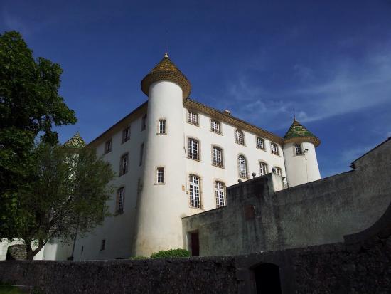 Hotel du Vieux Chateau : Le château du village