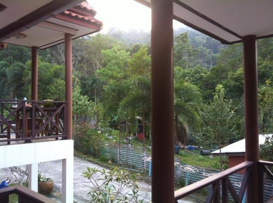 Banphu Resort: View from our balcony