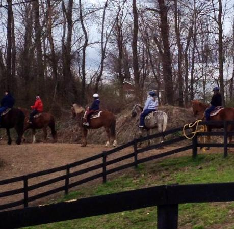 Pinegrove Family Dude Ranch: Riding
