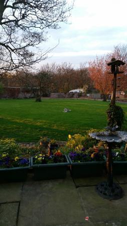 Heath House: Back garden area
