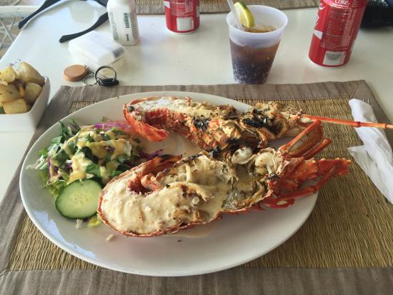On Da Rocks: Lobster
