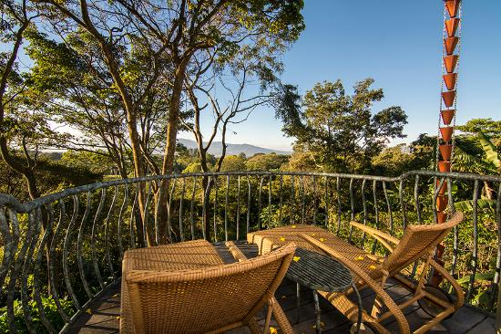 "Finca Rosa Blanca Coffee Plantation & Inn: Balcony of ""EL CIELO"" Master Suite Cottage"