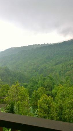 Munduk Sari Nature & Garden Villa: Vue terrasse