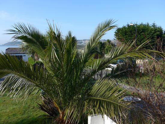 Chy-an-Mor: View from our bedroom towards Newlyn