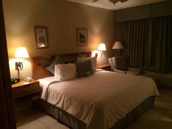 Cara Suites - Pointe a Pierre: Hotel room