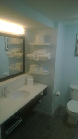 Hampton Inn Tampa / Rocky Point - Airport: Bathroom