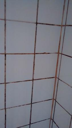 Henwick House Bed & Breakfast: Supposed to be white grout