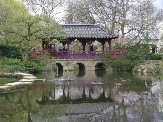 Japanischer Garten Leverkusen Alemania Picture Of Japanischer