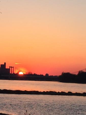 Camping Berger: Sonnenuntergang am Rhein