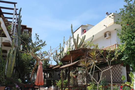 Matala View Pension : Rue où se situe l'hôtel