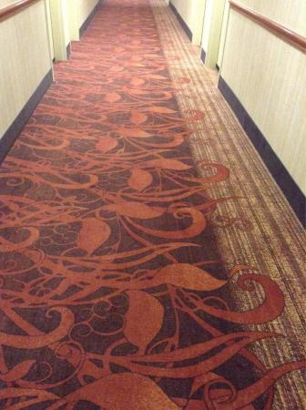 Hampton Inn & Suites Fort Worth-West/I-30: Clean hallways