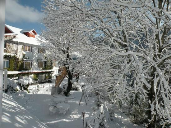 Alps Resort Dalhousie: Alps resort in Snow