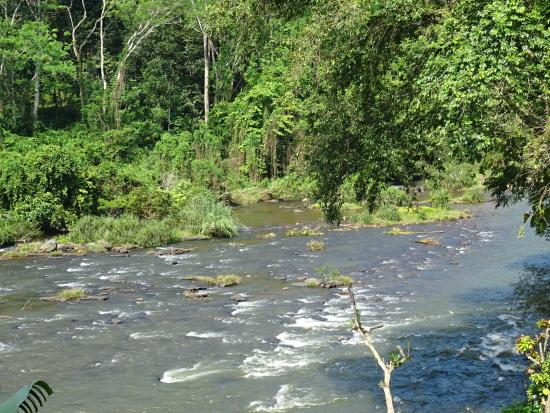 Kithulgala Rest House: The River - View from the restaurant