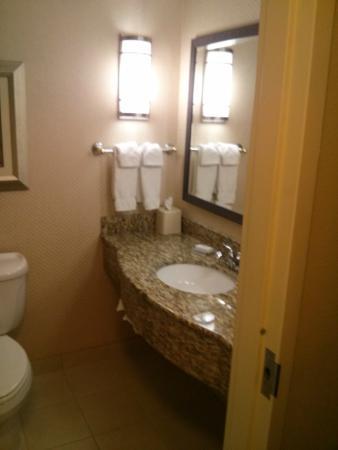 Hilton Garden Inn Billings: Bathroom Vanity Design