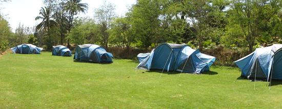Urban Valley Tent Stay & Tent Stay - Picture of Urban Valley Bengaluru - TripAdvisor