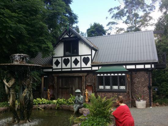 Tamborine Mountain Distillery: the tasting room