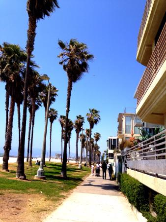 Photo of Beach Venice Beach at Los Angeles, CA 90291, United States
