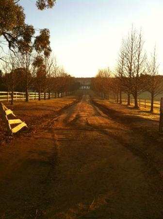 The Oaks Ranch and Country Club Driveway