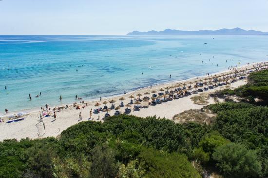Zafiro Bahía : Playa de Muro Beach