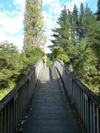 Whangarei, Yeni Zelanda: Walking path
