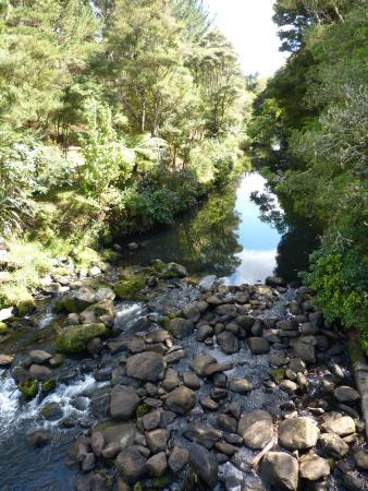 Whangarei, Yeni Zelanda: and again