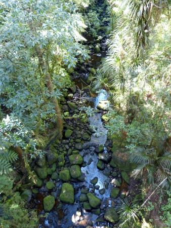 Whangarei, Nya Zeeland: and again