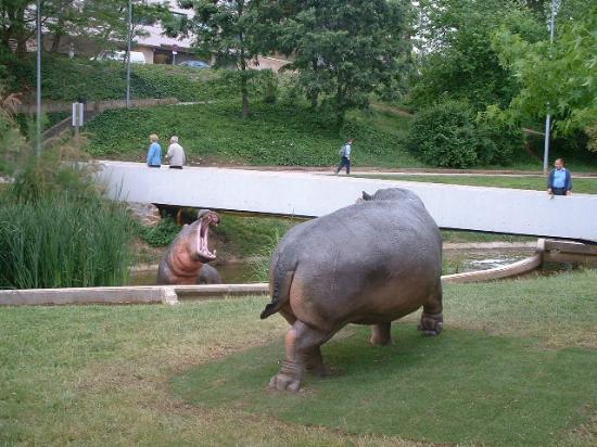 Parc de Vallparadis: esculturas de hipopótamos