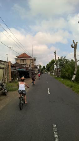 Pelangi Bali Tour - Day Tours