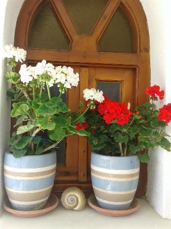 Fasoulakis Rooms: Window/Corridor?Romm nr.2