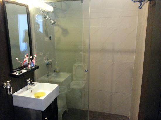 Kasauli Exotica: Toilet